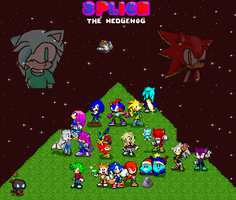 Splice The Hedgehog Cast Pic by Frost1992