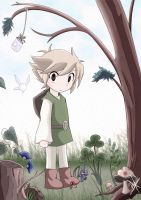 What have you done Link? by Inuyasha-no-e