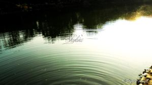 The Lake by Skyline46