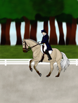 Windcrest Acres' Annual: We can do dressage to by DragonsTigerLilly