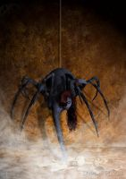 Arachne by Daniel-Rocal