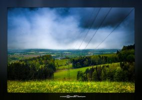 Electric Nature #04 by artofphotograhy