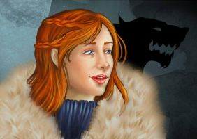 The Queen in the North by Turtletamer42