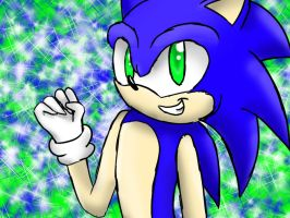 Request - Sonic by AokitianWolf