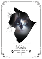 Patches Silhouette memorial portrait by JustLynnWeav