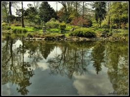 Little island in little garden by aadicc
