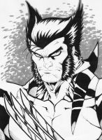 Wolverine with grey stuff by Kid-Destructo