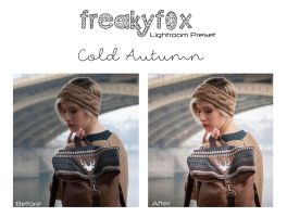 Cold Autumn - Lightroom Preset by FreakyF0x
