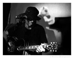 Sparklehorse by colpewole