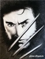 Hugh Jackman by Vivi--Art
