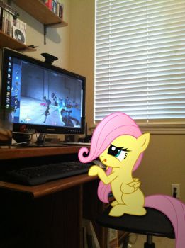 Filly Fluttershy Playing TF2 by ShadyHorseman