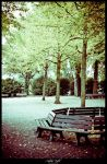 The park bench by andreasbf