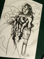 Wonder Woman - Inktober1 by Titancross