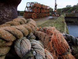 St Abbs Harbour by KayTeez