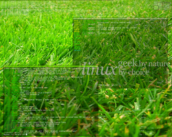 The grass theme. by her5elf