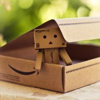 Welcome Home Danbo! by Sarah-BK