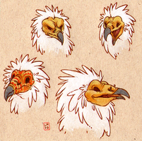 bust trade - egyptian vulture by luve