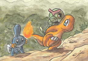Five years of Mystery Dungeon by Yamashita-akaDoragon