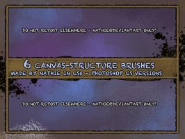 Canvas Structure Brushes by nathies-stock