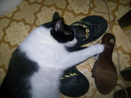 My Shoes... All Mine... by Night-Maiden