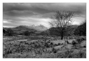 Ullswater Valley by nbeasley