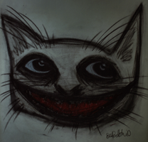 charcoal cat by beyourpet