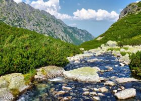 Mountain stream - Roztoka by miirex