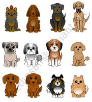 Cute Dog Breeds 1 by seethesun
