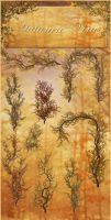 Autumn Vines png by moonchild-ljilja
