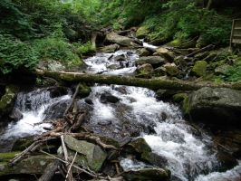 streaming rapids by plantm