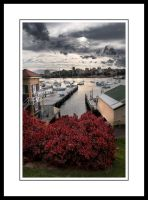 Boats at Manly Cove by Tiberius47