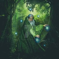 Wizardly Woodland by PerfectionART