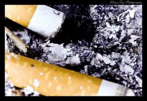 Tabacco by WannTrad