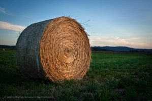 Hay Roll II by inessentialstuff