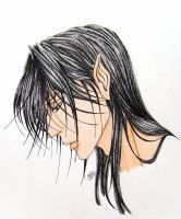 Feanor, the Spirit of Fire by Saeleth