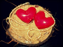 red  candle hearts in coconut shell by florina23