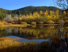 Fall Pond by MartinGollery