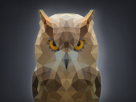 Polygon Collection - Owl by Enttei