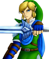 Hyrule Warriors Link by haydenmaye