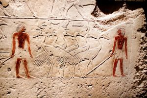 Offering Scene from tomb of Ka-em-rehu, ca 2300 BC by phlufii