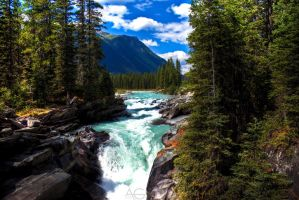HDR Forest River, Banff Canada by DaliGiger