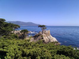 17 mile drive by OrigamiChemist