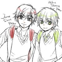 James.S.P and Albus.S.P by sojiron