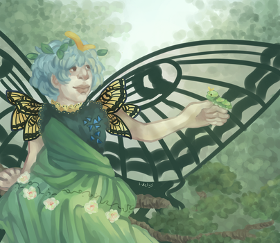 Swallowtail by sidelys