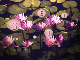 Editing Water Lilies by Aerocross