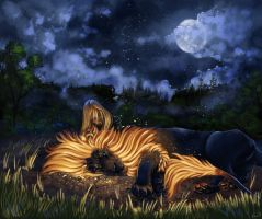 Moonlit Rest by Kuvari