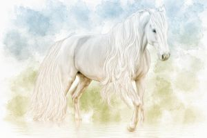 watercolour horse in the rain by ditney