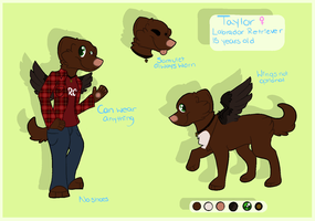 taylor ref sheet by labramazing