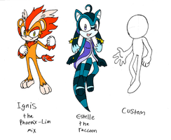 Sonic FC Adoptable Batch AND Custom CLOSED by BerserkBreaker