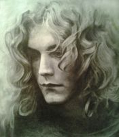 Robert Plant by Harwie